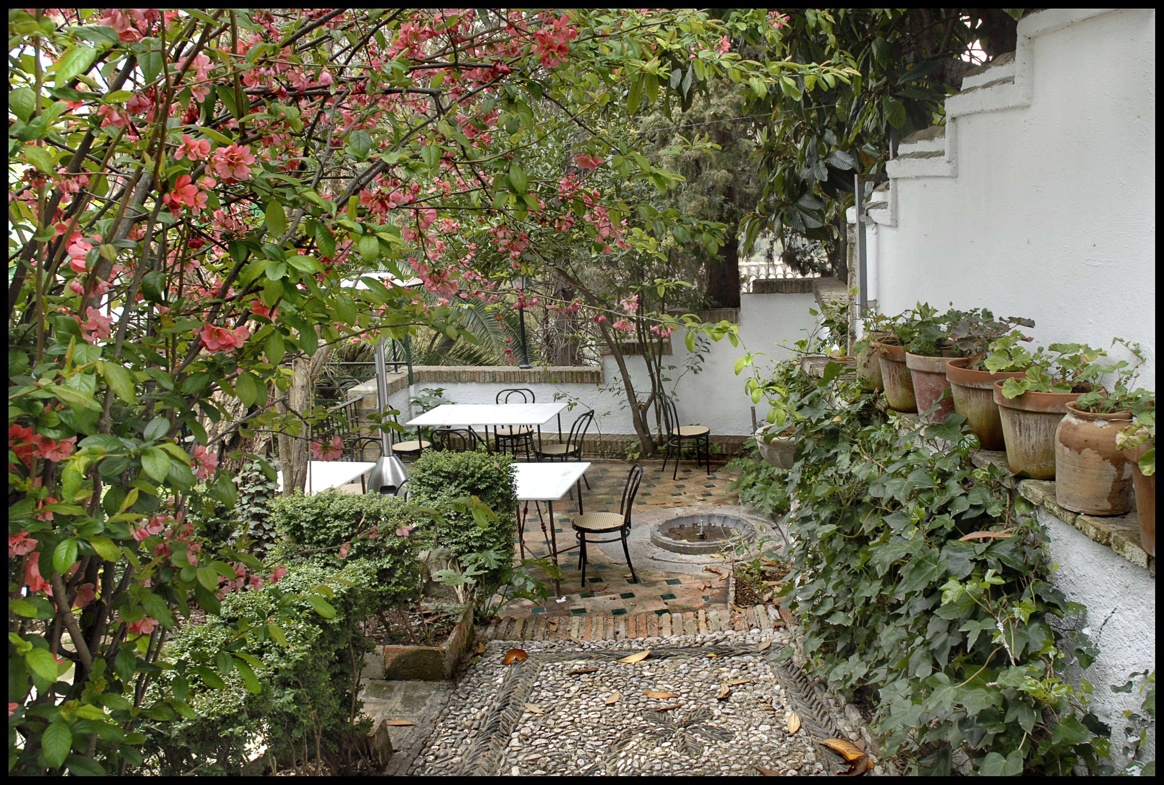 terraza jardin y flores web mirador de morayma